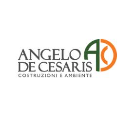 Track record Angelo De Cesaris